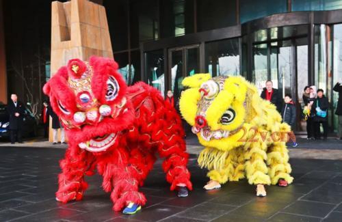 绵阳舞龙舞狮庆典 狮子的寓意